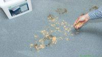czyszczenie brudnych wykładzin na sucho